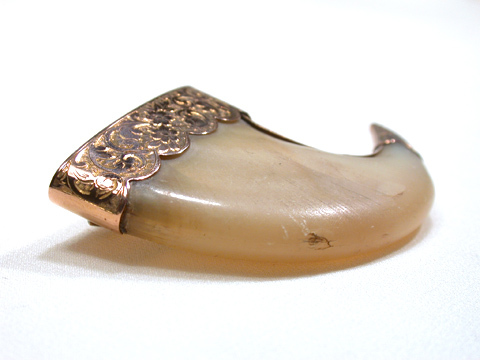 Massive Victorian Tiger Claw Brooch
