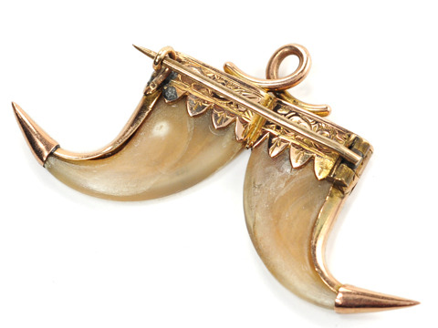 Double the Pleasure: Antique Tiger Claw Brooch Pendant