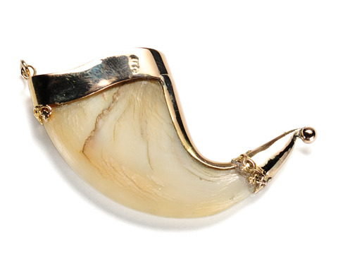 Strength & Courage: Victorian Tiger Claw Pendant