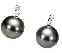 South Sea Cultured Black Pearl Earrings