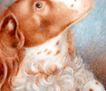 A Simple Antique Treasure -  Portrait Miniature of a Spaniel Box