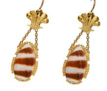Sea Treasure: Cowrie Shell Earrings