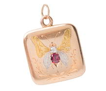 Edwardian Nature  - Butterfly Photo Locket