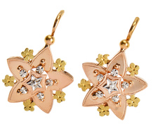 Stars in the Sky - French 18k Gold Earrings