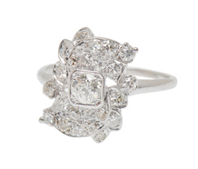 Unexpected Diamond Encrusted Ring